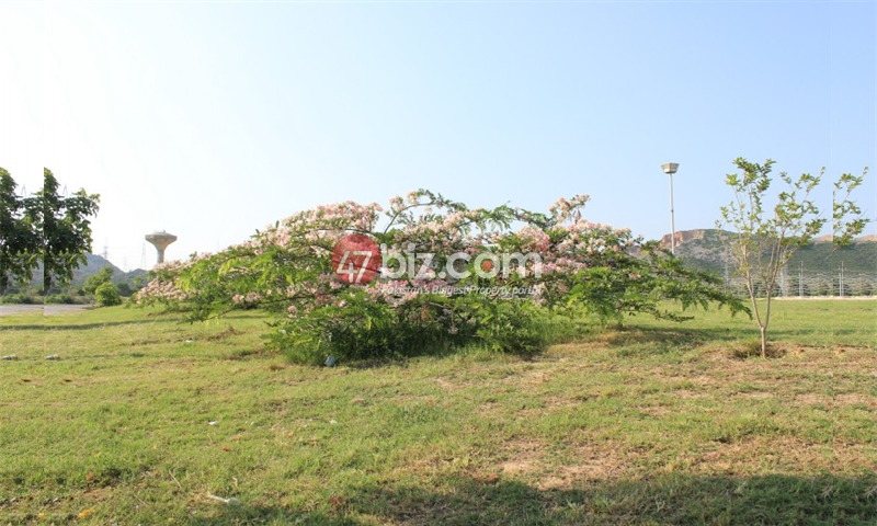 30x60-Residential-Plot-for-sale-in-B-17-Block-E---MPCHS-2