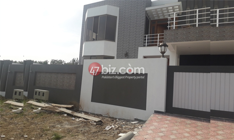 500-Sq-Yd-House-for-Rent-in-F-11-3