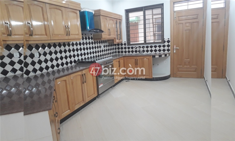 500-Sq-Yd-House-for-Rent-in-F-11-6