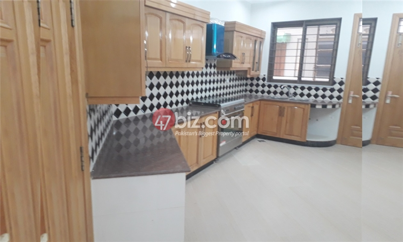 500-Sq-Yd-House-for-Rent-in-F-11-7