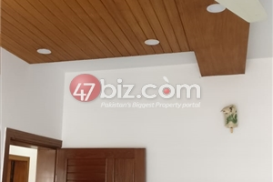 40x80-Brand-New-Sun-Face-Out-class-house-for-sale-in-G-15/1-19