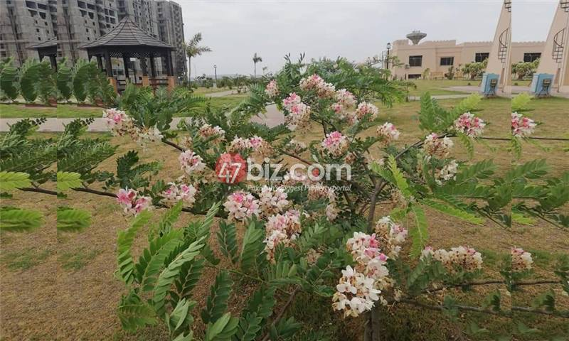Residential-Plot-for-Sale-in-B17-Block-A,B,C,D,E,F-26