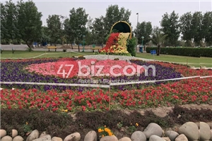 Commercial-Plot-Is-Available-For-Sale-8