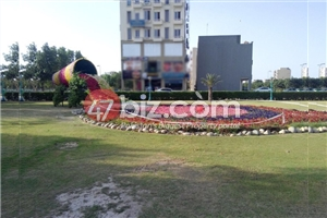 Commercial-Plot-Is-Available-For-Sale-10