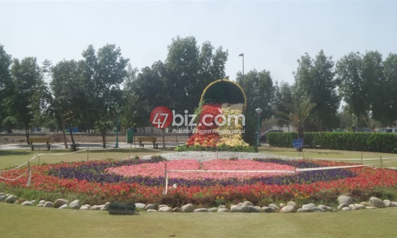 Commercial-Plot-Is-Available-For-Sale-2