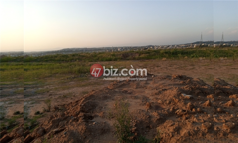Sector-E-plots-for-sale-front-back-open-5