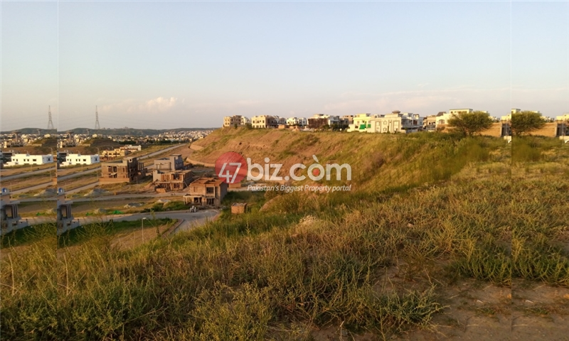 Sector-E-plots-for-sale-front-back-open-25
