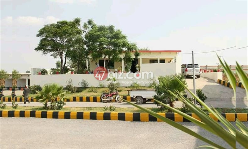 25x50-plot-available-for-sale-in-Street-no.35-in-University-Town-4