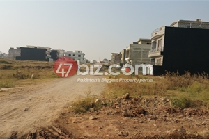 Plot-Available-For-sale-40x80-in-D-12/2,-Plot-#-334-1