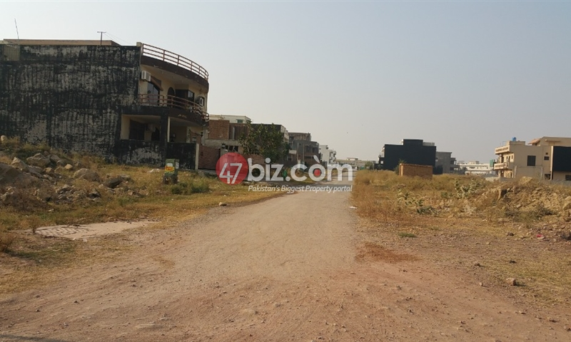 Plot-Available-For-sale-40x80-in-D-12/2,-Plot-#-334-2